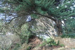 The Big Sur of Brittany